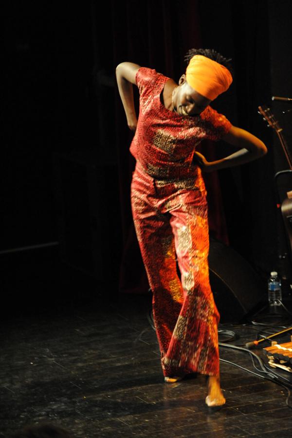 Spectacles danse et musique africaines