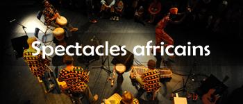 Spectacles danses et musiques africaines